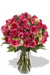 Fiery Pink Spray Roses